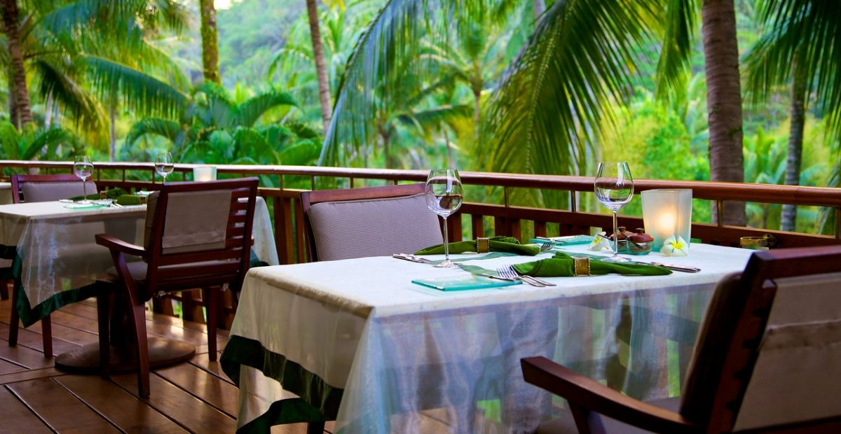 Dining Table at Rainforest Restaurant