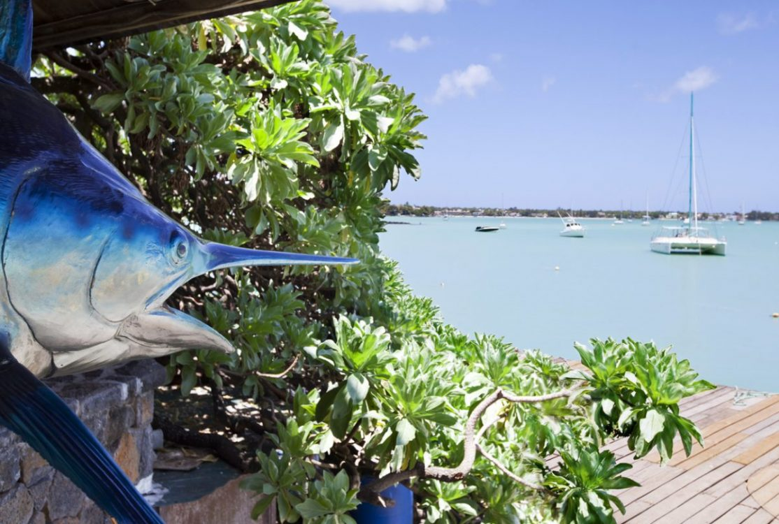 Saturday Superdraw 20 Best Fishing Spots - Cape Verde Islands, Africa